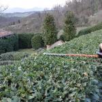 I giardini di Lapo di Lapo Bacci giardiniere a Firenze e Prato2