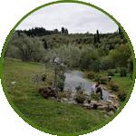 Realizzazione giardini a Firenze