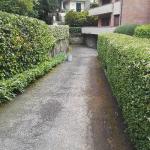 manutenzione verde a Firenze