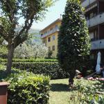 potatura alberi a Firenze