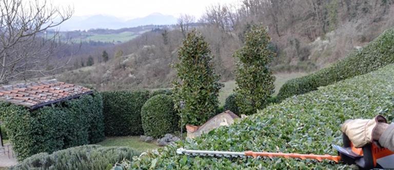 I Giardini di Lapo sono a disposizione per un contratto di manutenzione delle aree verdi condominiali