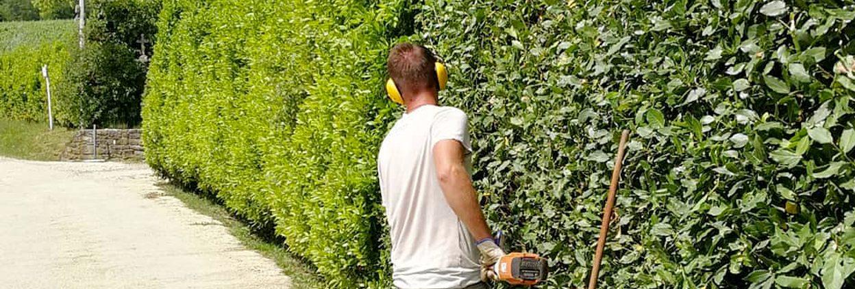 Se stai cercando un giardiniere professionista a Firenze contatta I Giardini di Lapo. Sopralluogo in tempi rapidi e preventivo gratuito.
