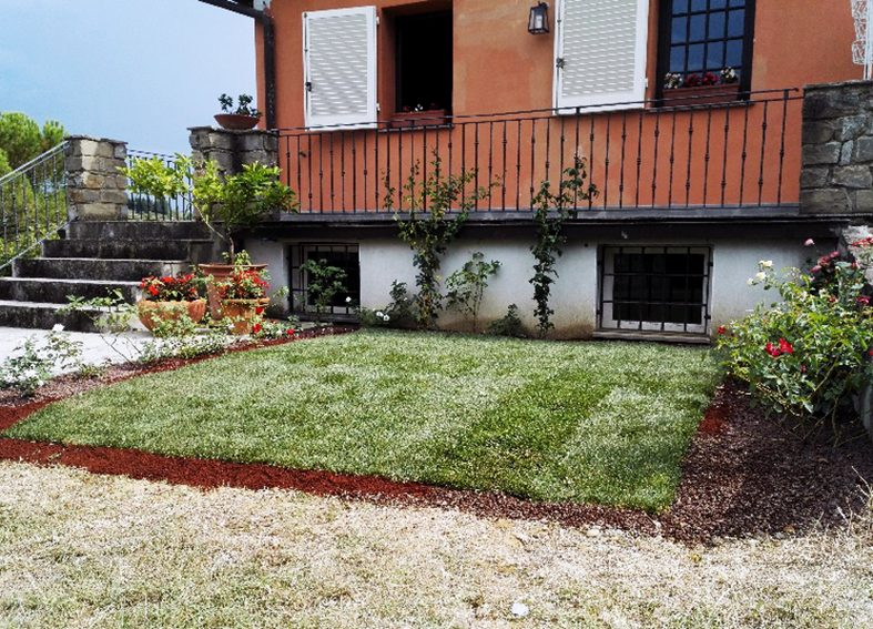 Realizzazione e manutenzione di tappeti erbosi a Firenze. Affidati a I Giardini di Lapo per progetare il tuo spazio verde. Richiedi un preventivo gratuito.