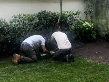 Realizzazione giardini a Firenze: affidati a Lapo Bacci per fare la scelta più intelligente nella creazione del tuo spazio verde
